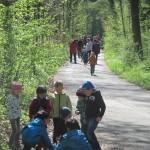 Waldschätze